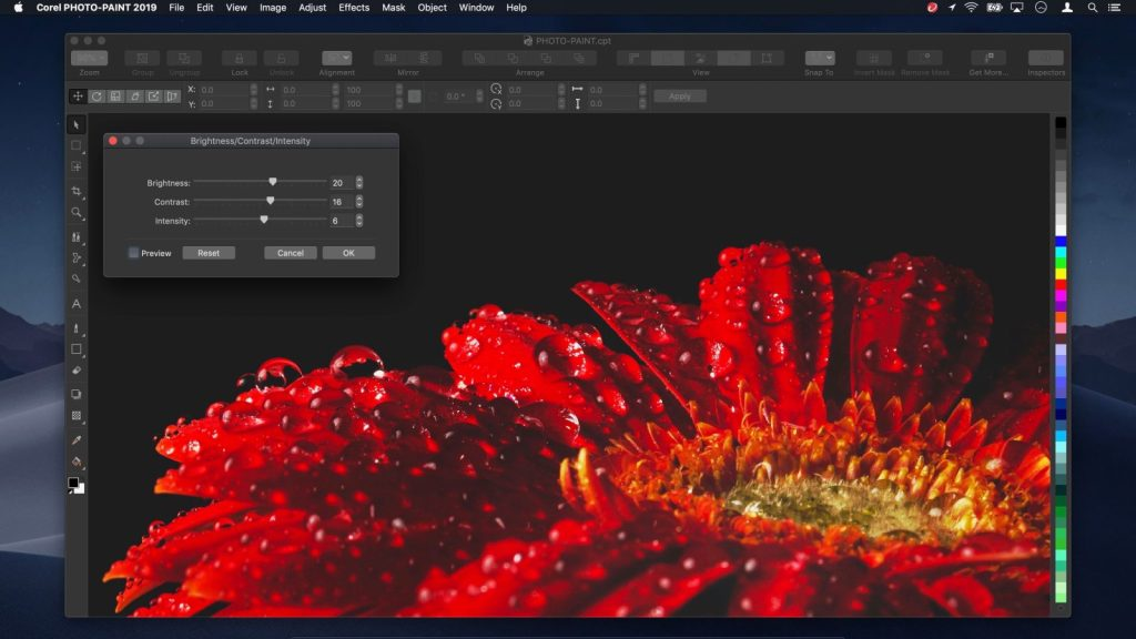 Télécharger CorelDRAW Graphics Suite 2019 pour Mac OS